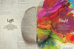Мозок дизайнера